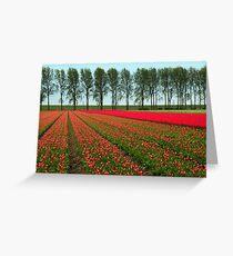 Tulip Landscape Greeting Card