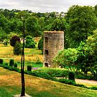 Blarney Castle Lookout Tower by Tom Gomez