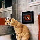 Mirror Cat by Ellen Cotton