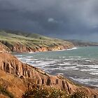 Winter  On The Fleurieu by Robert Armitage