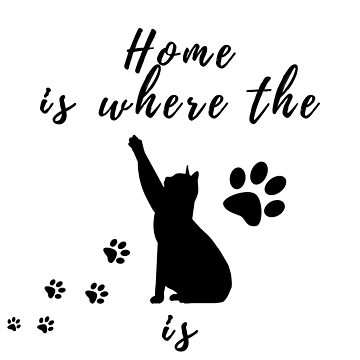 Home is where the cat is by MyAwesomeBubble