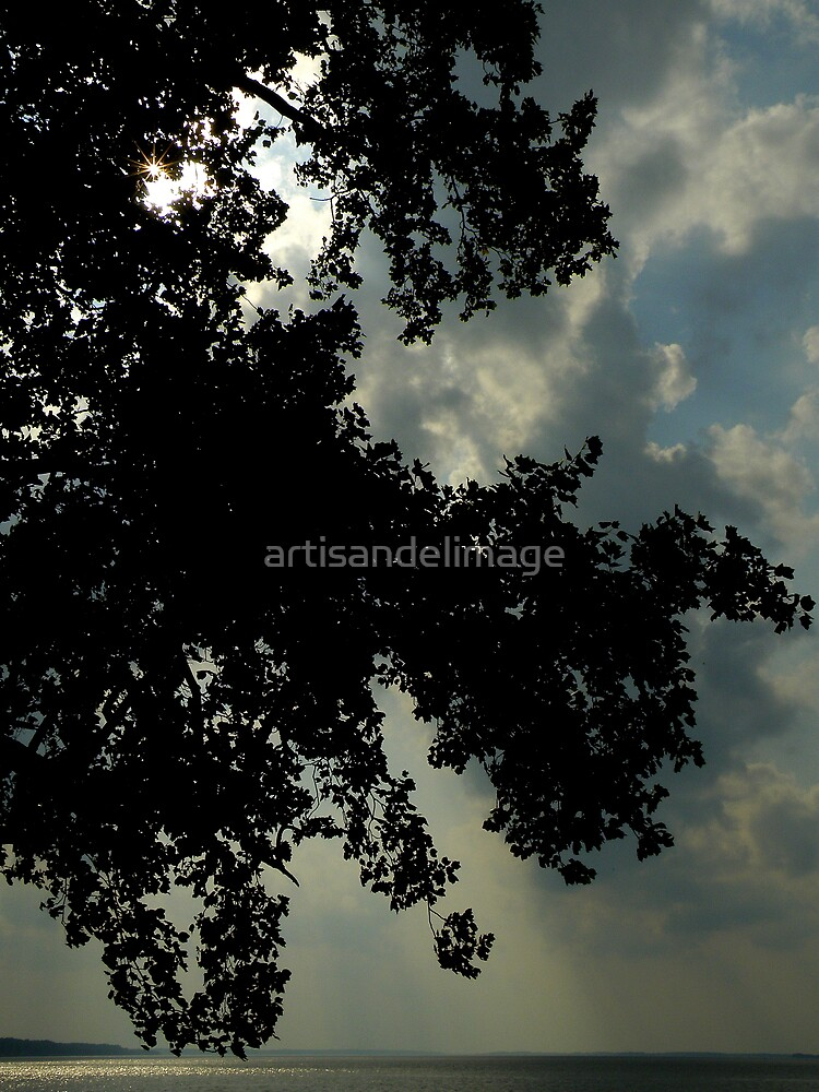 The River Bank ~ Part Five : Skyscape by artisandelimage