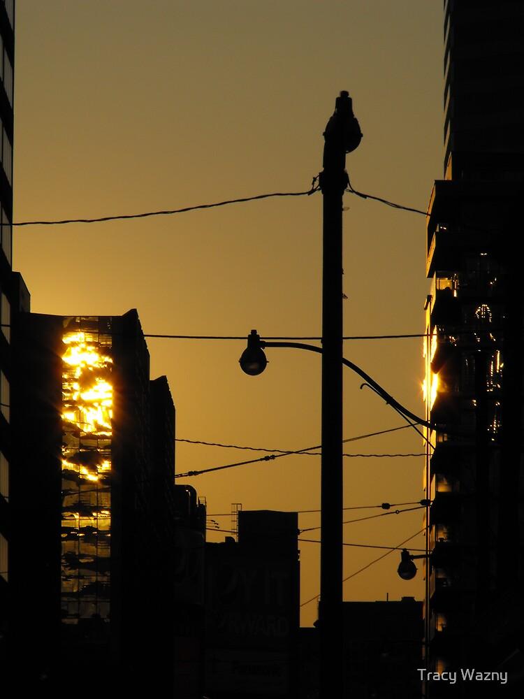 Sunrise In Downtown Toronto  by Tracy Wazny
