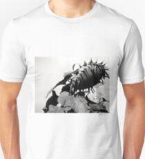 Sunflower In Sunlight Unisex T-Shirt