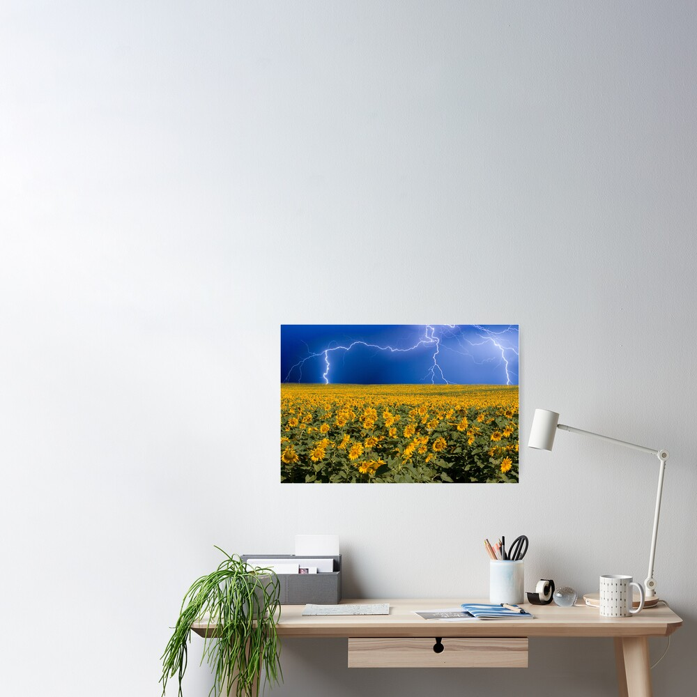 Storm on the Sunflower Field Horizon Poster