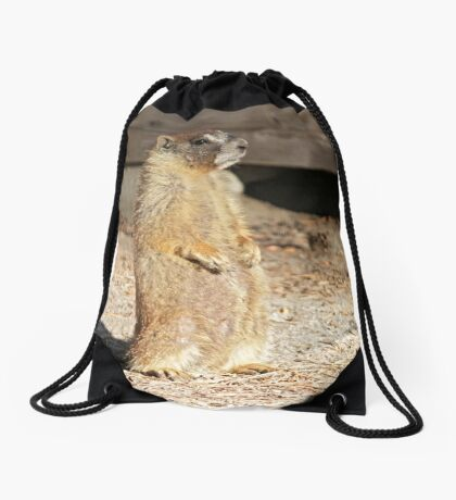 Looking cool Drawstring Bag