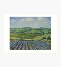 Wine Country Art Print