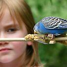 Childhood Wonderment by Lisa G. Putman