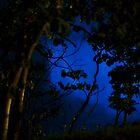 Versteckte blaue Wasserfälle von Manon Boily