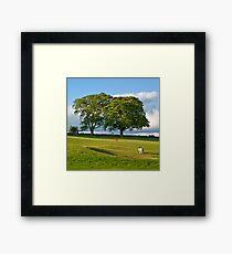 Golfer Framed Print
