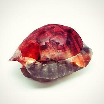 Red Shell - Kart Art by andywynn