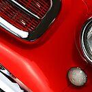 Red Rambler by Rebecca Cozart