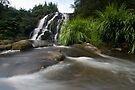 Owharoa Falls. by Michael Treloar
