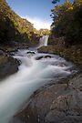 Tawhai Falls. by Michael Treloar