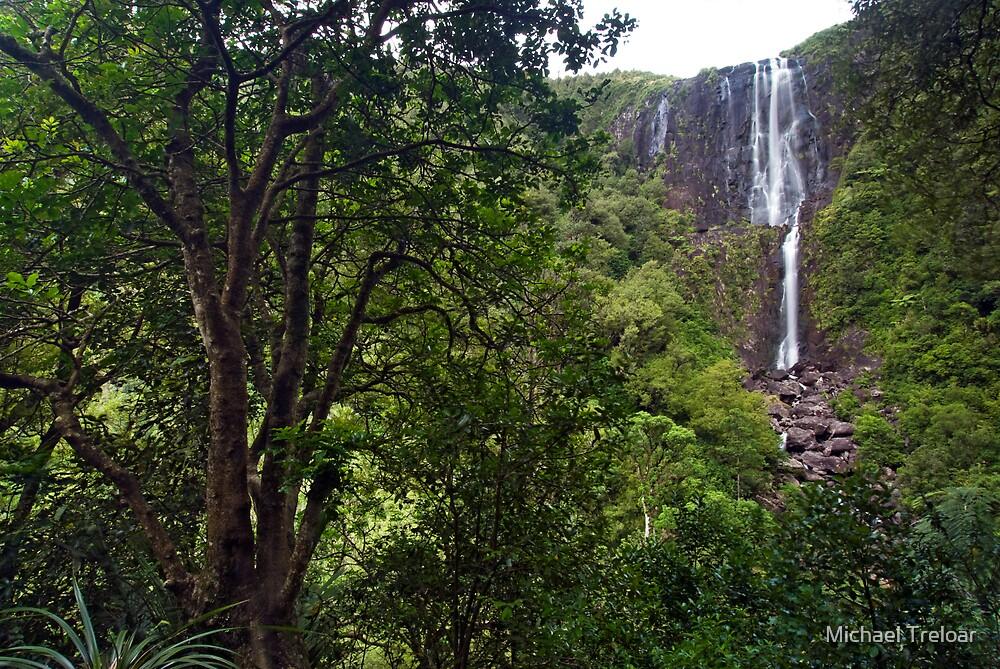 Wairere Falls. by Michael Treloar