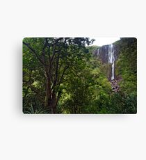 Wairere Falls. Canvas Print