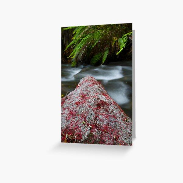 Rata Rock. Greeting Card