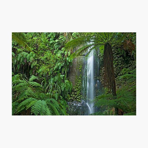 Forgotten Waterfalls. Photographic Print
