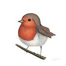 Little Robin by Rachel Blackwell