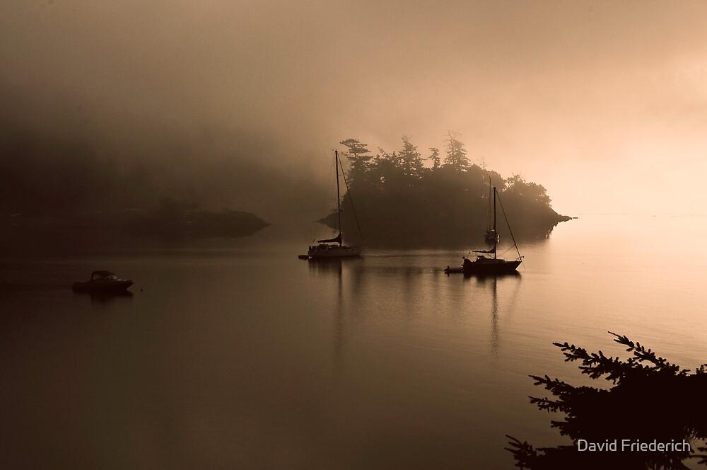 Morning Mist by David Friederich