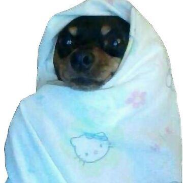 BLANKET DOGGO (soy frío brrr) de BenDeano