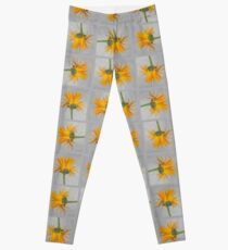 Marigold with Punk Hairstyle Leggings