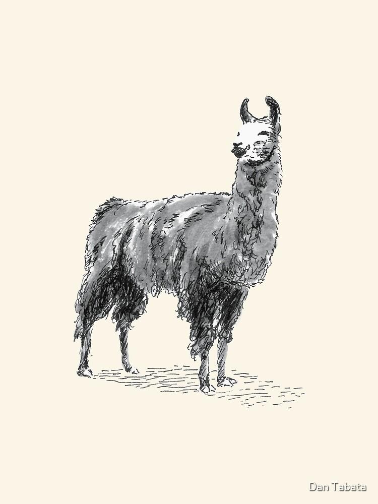 Happy Llama by Dan Tabata