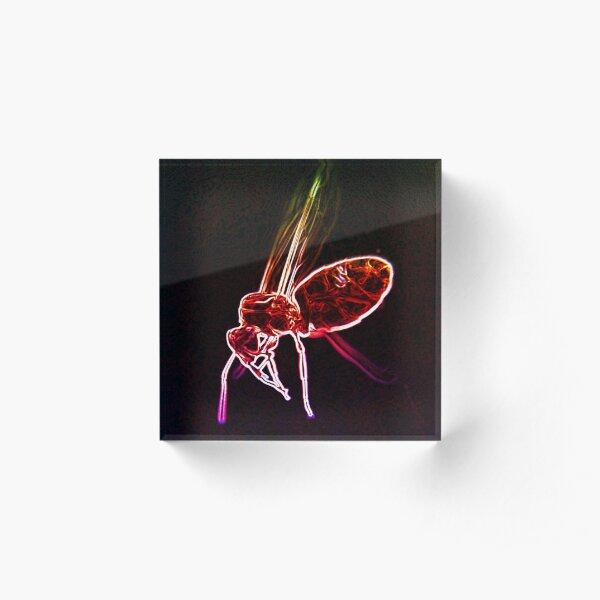 Neon macro flying ant Acrylic Block