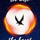 The Head is too Wise the Heart is all Fire by ocatastrophe