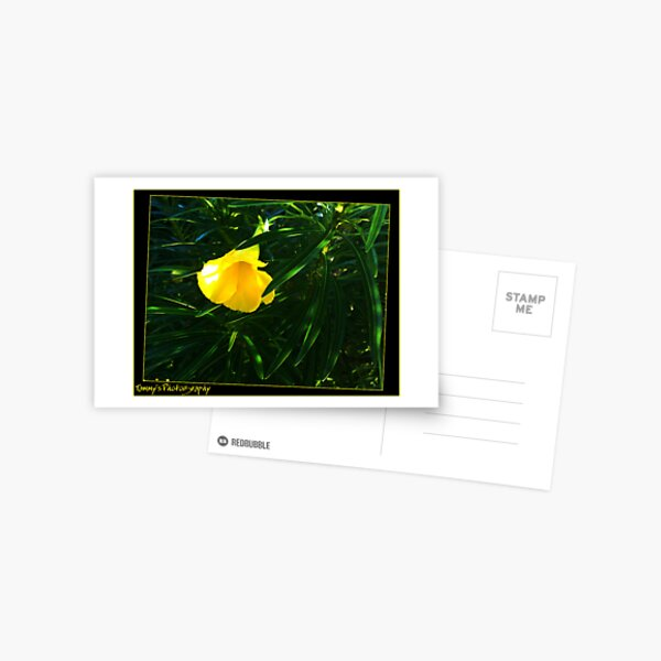 Yellow flower Postkarte