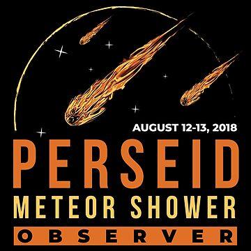 Perseid Meteor Shower Observer by radvas