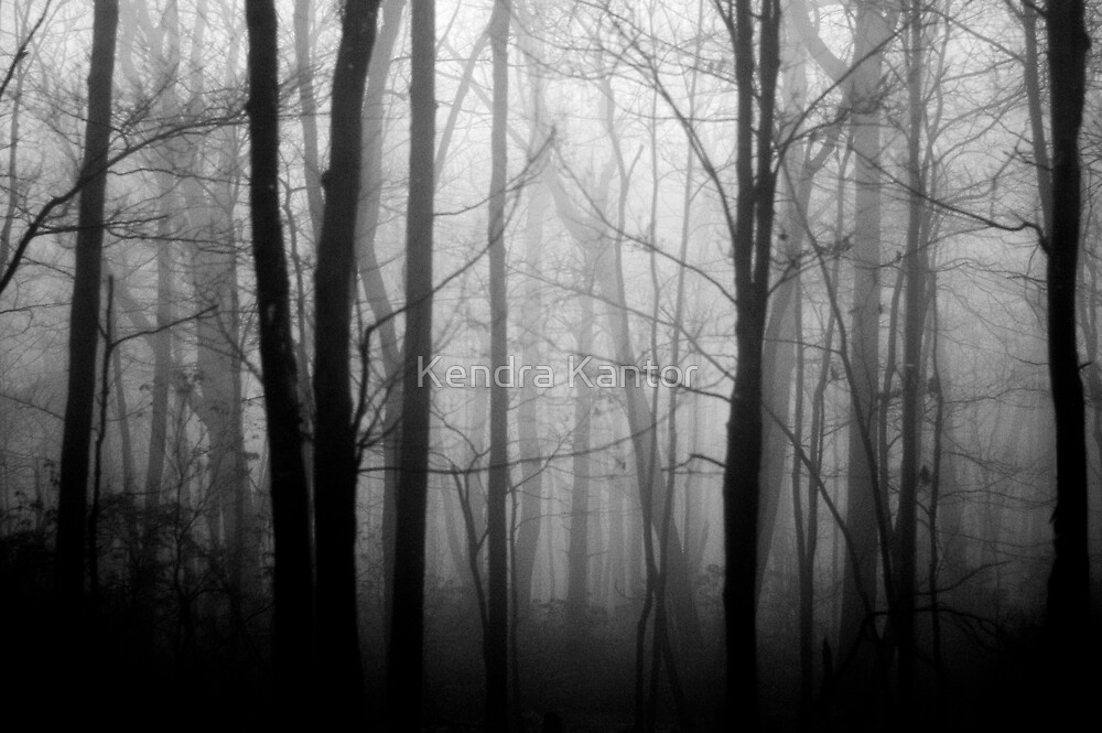The Forest and the Fog 2 by Kendra Kantor