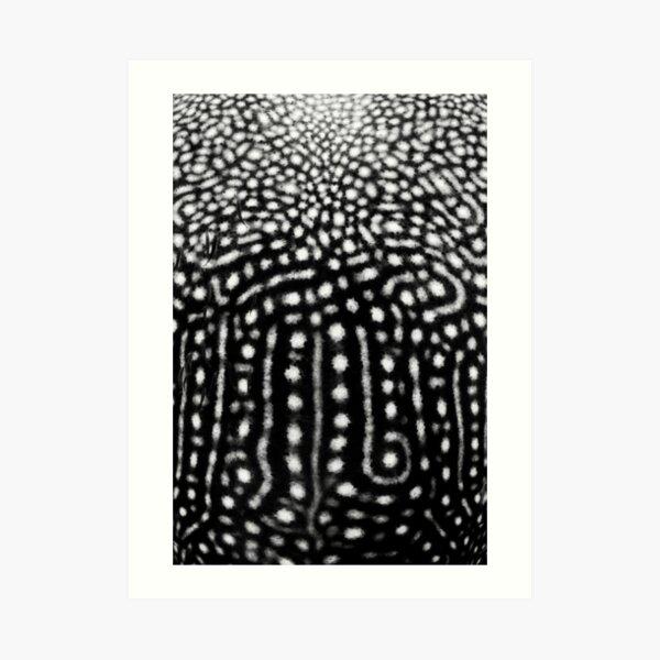 Whale Shark Spots Art Print