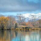 Snowy Top by Peter Kurdulija