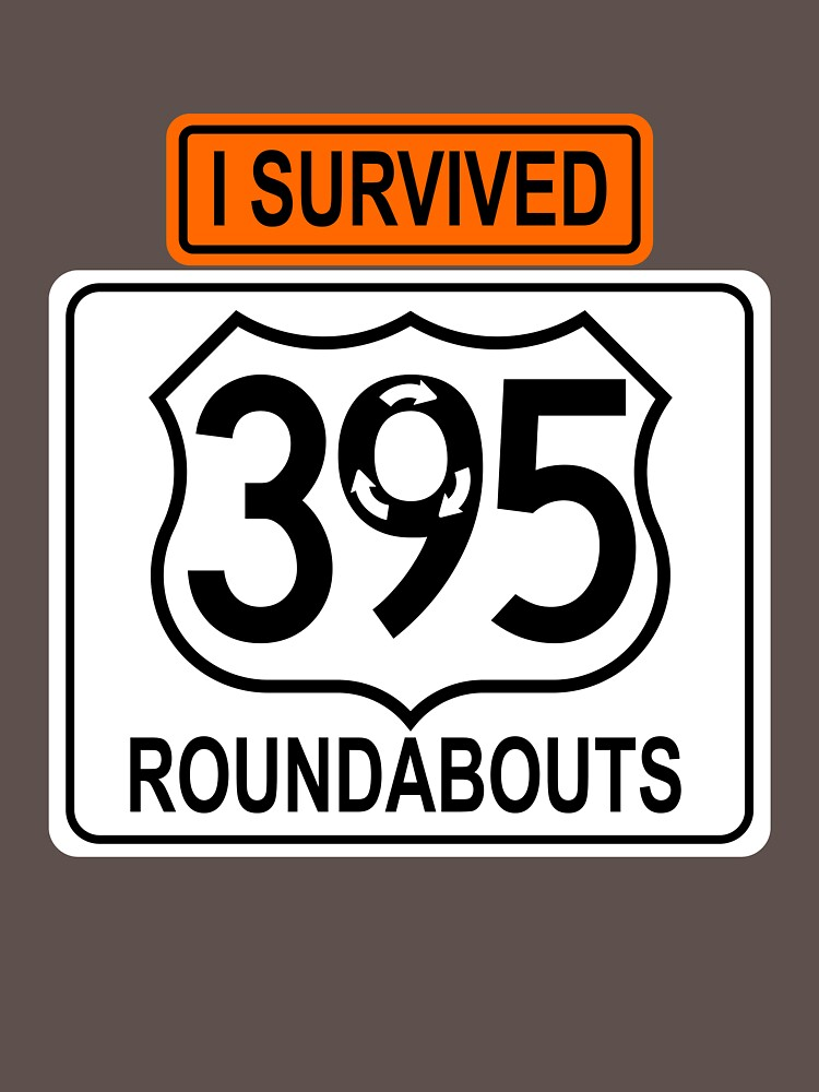 I Survived 395 Roundabouts by dpgazette