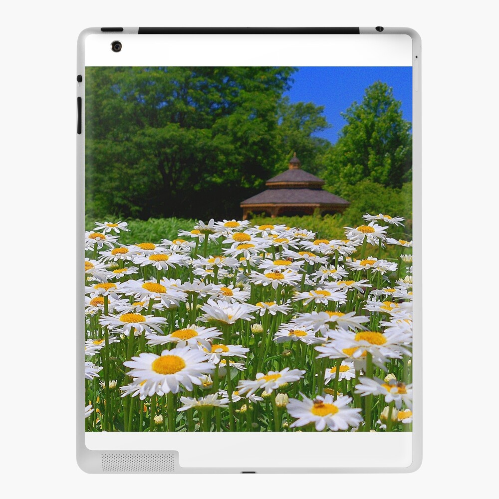 Pushing Up Daisies iPad Case & Skin