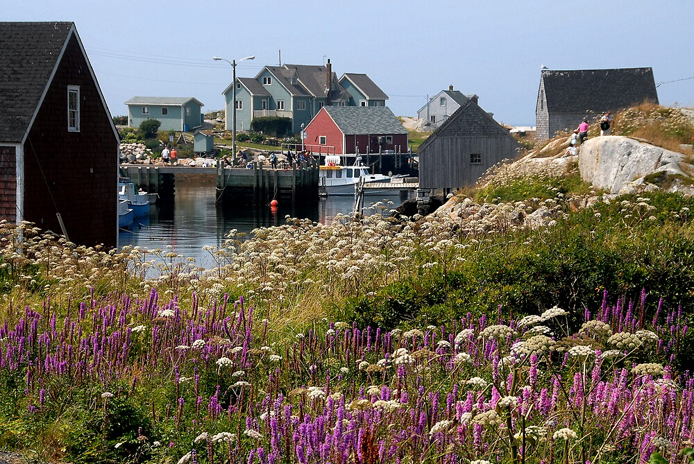 Peggy's Cove,  Nova Scotia by Johannes  Huntjens