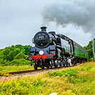 Under full steam by Dave  Knowles