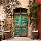 The Old Turquoise Door by Rae Tucker
