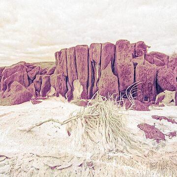 Rock On Salt by DVJPhotography