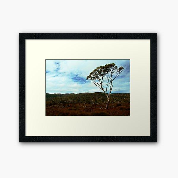 Lake Windermere, Overland Track, Tasmania Framed Art Print