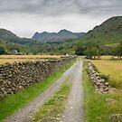 Langdale Pikes, Cumbria by RamblingTog