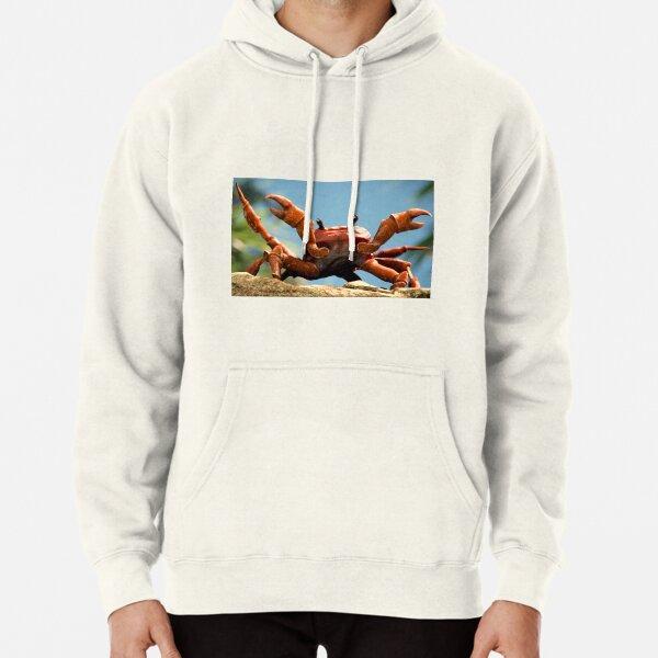 UESEU Mens Fashion Solid Color Hoodie Long-Sleeve Pullover Angry Monkey Hooded Sweatshirt