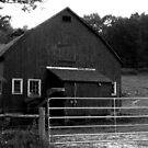 Old Barn by mooner1
