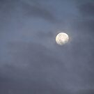 Cloud Covered Full Moon by down23