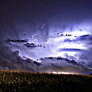Iowa by Tim Wright