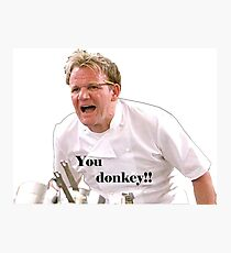 You Donkey! Photographic Print