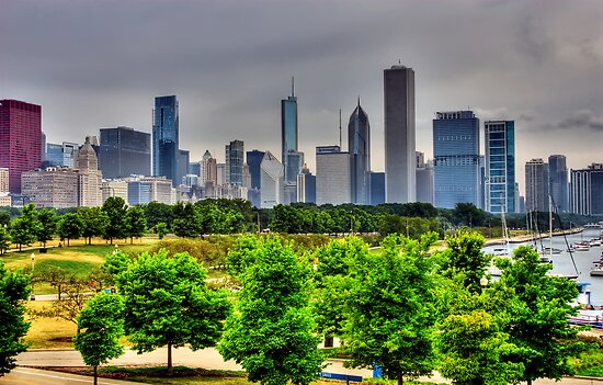 Chicago Skyline by Jayme Rutherford