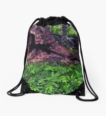 Enchanted Woods, 2018.07.17 Drawstring Bag
