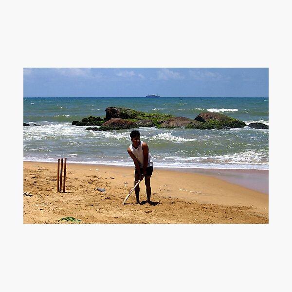 Cricket, lovely cricket ... Photographic Print